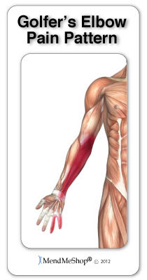 golfers elbow typical pain map